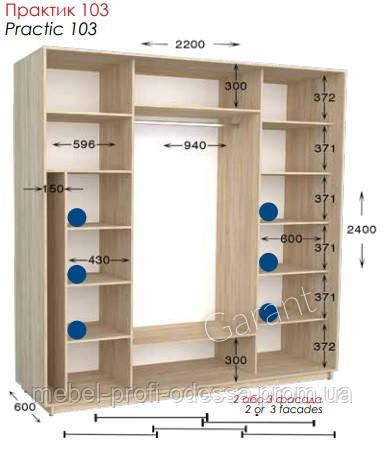 2200х600х2400 Практик 103 Прямой шкаф купе фабрика Гарант в Одессе