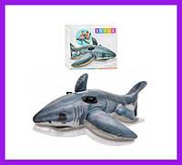 """Детский надувной плотик """"Акула"""" Intex 57525 NP с ручками, размер: 173 х 104 см, от 3 лет"""