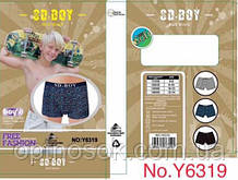 """Детские боксеры """"SD Boy"""". 6319"""