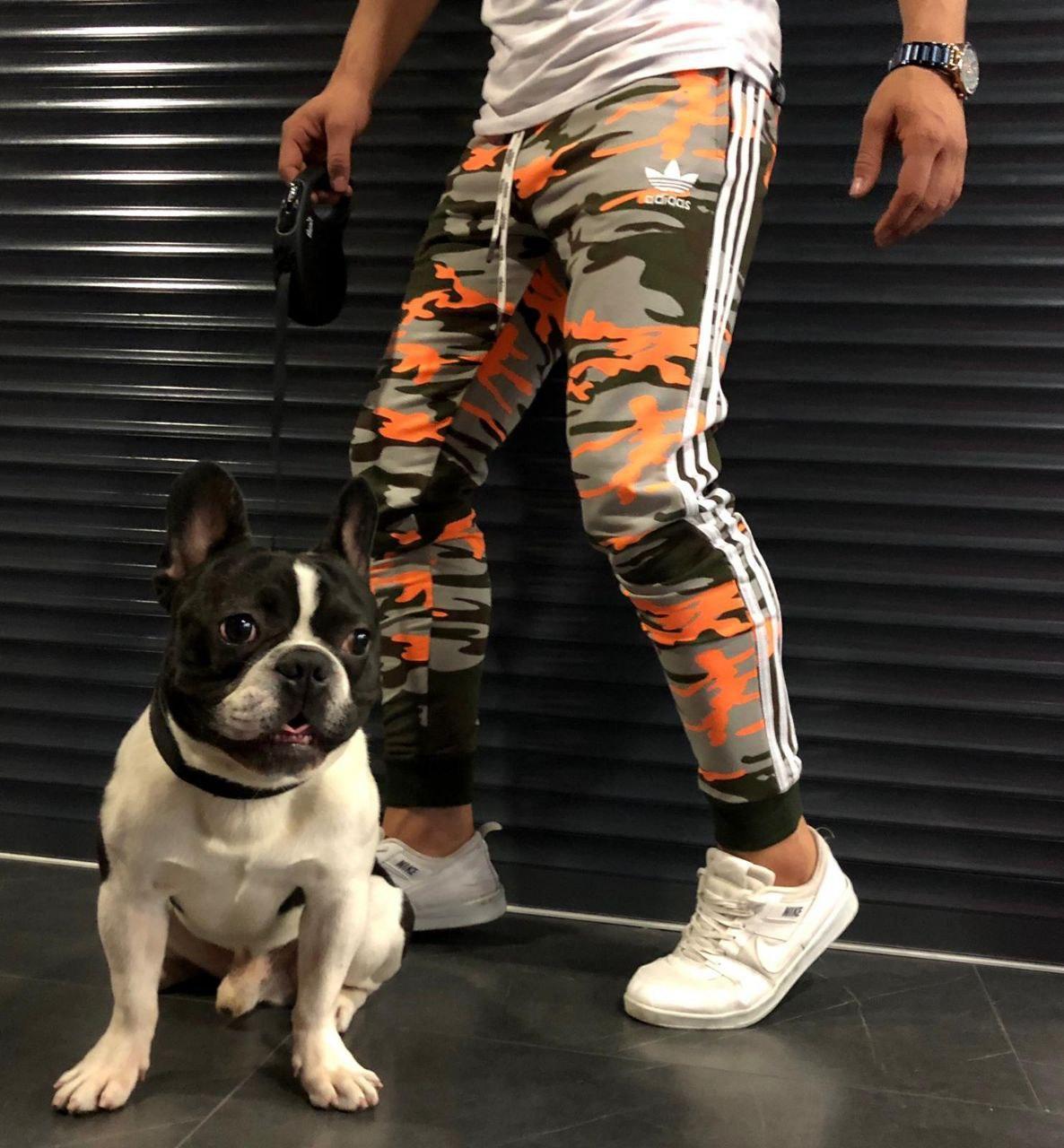 Мужские штаны Adidas CK764 разноцветные
