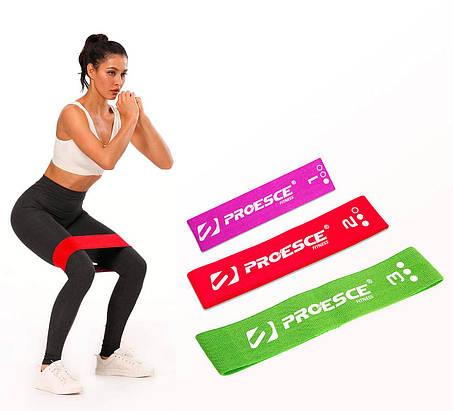 Тканевые фитнес резинки Go-Flow ( Set of 3), фото 2
