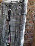 Штани в клітку від Noche Mio, жіночі ALLEGRO 4.015, розмір 38/М, фото 3