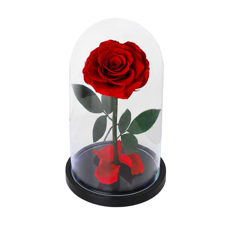 Роза в колбе с LED подсветкой | Маленькая