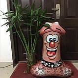 Для девичника 87 см фольгированный шар мистер пи-пи 1835, фото 2