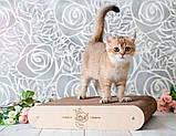 Когтеточка - лежанка напольная дизайнерская 3D Markissa TM, фото 3