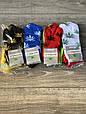 Жіночі носки сіточка шкарпетки стрейчеві Montebello з малюнком листя конопель 35-40 12 шт в уп мікс 6 кольорів, фото 3