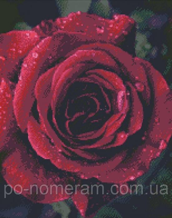 алмазная вышивка на подрамнике роза