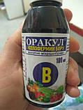 Хелатное удобрение колофермин бора Оракул 100 мл на 100-200 литров воды, для опрыскивания Долина Украина, фото 4