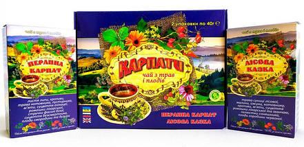 Натуральный травяной фиточай из Карпатских трав и плодов, Подарочный набор травяного целебного чая, фото 3
