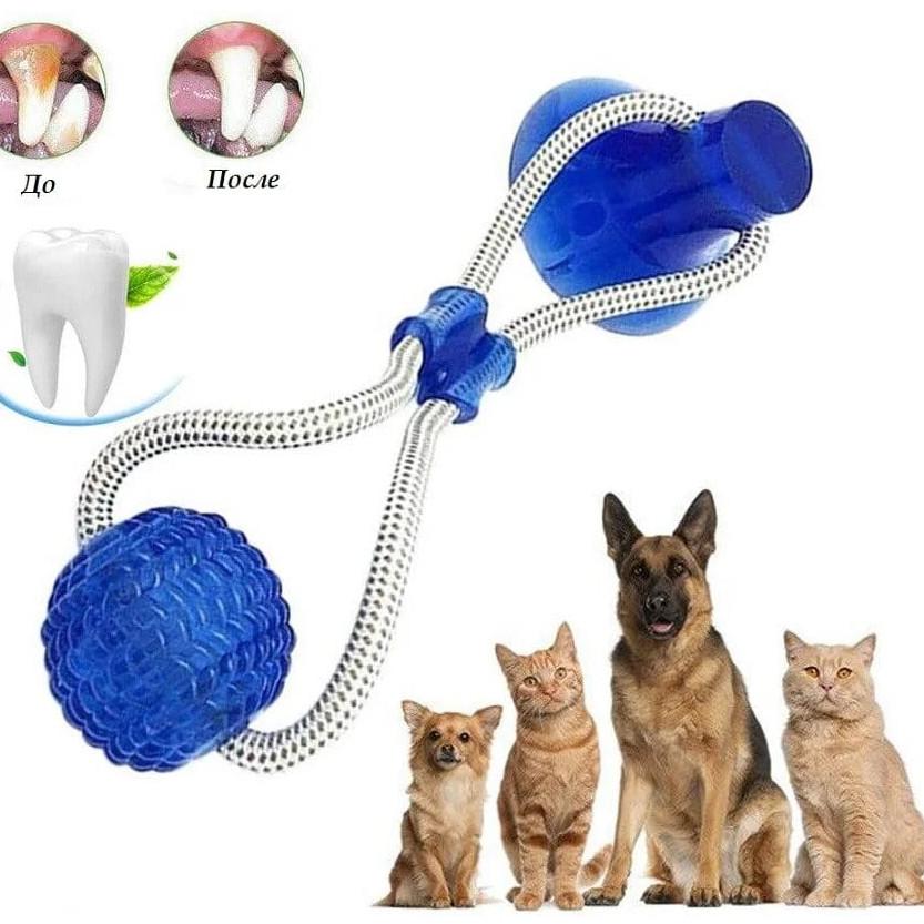 Багатофункціональна іграшка для домашніх тварин з присоском