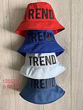 Панамка для мальчика на лето Trend р.52-54