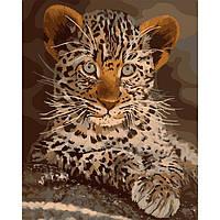 Картина по номерам  Маленький хищник ТМ Идейка 40 х 50 см КНО4169, фото 1