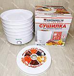 Сушка для овощей, фруктов и грибов Grunhelm 520 Вт на 5 лотков, сушилка, фото 2