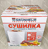 Сушка для овощей, фруктов и грибов Grunhelm 520 Вт на 5 лотков, сушилка, фото 4