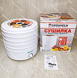 Сушка для овощей, фруктов и грибов Grunhelm 520 Вт на 5 лотков, сушилка, фото 6