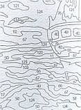 Картина по номерам Кот и бабочка, 40х40 (KPNE-02-08), фото 8