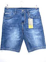 """Мужские джинсовые шорты (30-38) """"MarkWalker"""" 2P/P/LG-1824"""