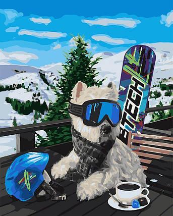 KH4171 Картина-раскраска Терьер на курорте, Без коробки, фото 2