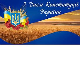 С Денем Конституции Украины!
