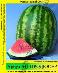 Семена арбуза AU-Продюсер 0,5кг