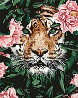 Картина по номерам  Отважный тигр ТМ Идейка 40 х 50 см КНО4172, фото 1
