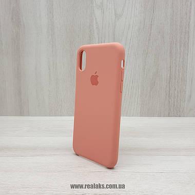 Чехол Silicone Case для Apple iPhone X / Xs flamingo, фото 3