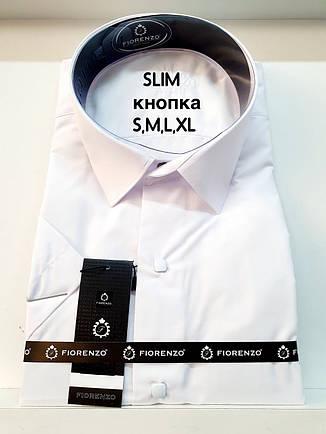 Рубашка с коротким рукавом Fiorenzo кнопка, фото 2