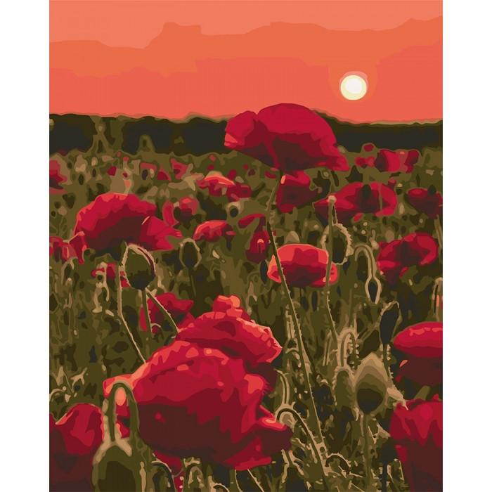 Картина по номерам Маковая поляна 40 х 50 см ТМ Идейка КНО3579