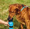 Дорожная поилка для собак Aqua Dog 550 мл Blue, фото 5