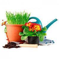 Дом, сад и огород