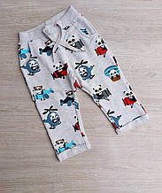 Брюки детские модные PANDA на мальчика размер 80-104 см купить оптом со склада 7км Одесса