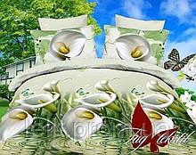 ТМ TAG Комплект постельного белья MS-CY14068