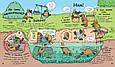 В гостях у тварин : Як тварини їдять (у), фото 2