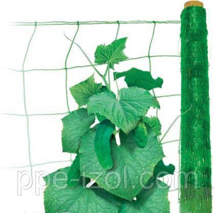 Сетка  шпалерная огуречная 1,70м х1000м (Венгрия) цена