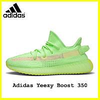 Женские кроссовки Adidas Yeezy boost 350 Glow in Dark (адидас изи буст 350 зеленые рефлектив) топ качество