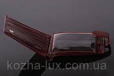 Портмоне мужское кожаное классическое Braun Buffel, натуральная кожа, фото 2