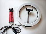 Кольцевая светодиодная Led Лампа 26 см LC666 со штативом и зажимом для телефона, селфи лампа/кольцо, фото 3