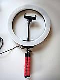 Кольцевая светодиодная Led Лампа 26 см LC666 со штативом и зажимом для телефона, селфи лампа/кольцо, фото 4