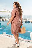 Нарядное летнее легкое платье больших размеров, горох, цвет Пудра 50,52,54,56, фото 3