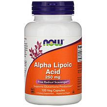 """Альфа-липоевая кислота NOW Foods """"Alpha Lipoic Acid"""" 250 мг (120 капсул)"""