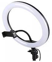 Профессиональная кольцевая светодиодная лампа для визажистов S31 диаметром 33 cм без штатива, фото 1