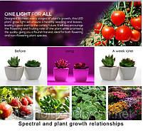Фито лампа для растений 80 Led 7W  E27 230V, фото 6