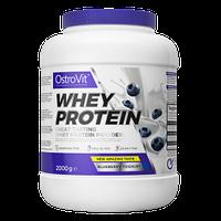 Протеїн Whey Protein OstroVit 2 кг, фото 3