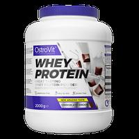 Протеїн Whey Protein OstroVit 2 кг, фото 4