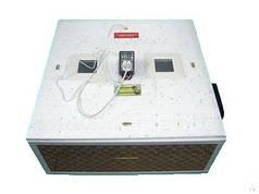 Домашній курячий інкубатор для яєць курочка ряба на 80шт з вентилятором автоматичний переворот