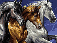 Картина по номерам Brushme 40х50 Трио лошадей (GEX5268)