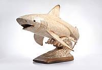 Резьба по кости купить, Акула, изделия из кости,
