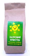 Натуральный Первый чаек для деток из Карпатских трав и плодов, Подарочный набор полезного чая из трав, фото 3