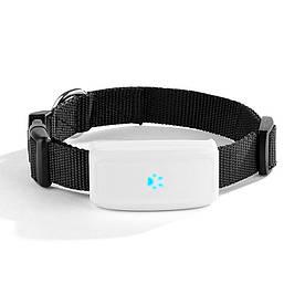 Ошейник TKSTAR для собак с водонепроницаемым GPS трекером Черный (RI0352)