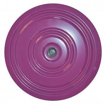 Диск здоровья металл, 28 см. Фиолетово - зеленый
